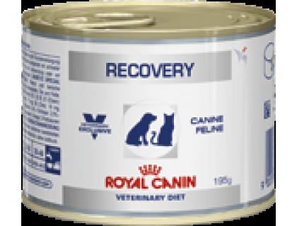 Royal Canin (Роял канин) Recovery Консерва для собак и кошек восстановительный период после болезни