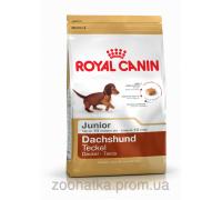 Royal Canin (Роял канин) Dachshund Junior (1,5 кг) корм для щенков породы такса до 10 месяцев